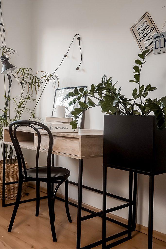 studentenzimmer einrichten, schwarzer Metallständer für Pflanzen, großer Schreibtisch im Loft-Stil, Vintage-Bugholzstuhl, Pflanzen im Studentenzimmer, Studentenzimmer im Loft-Stil